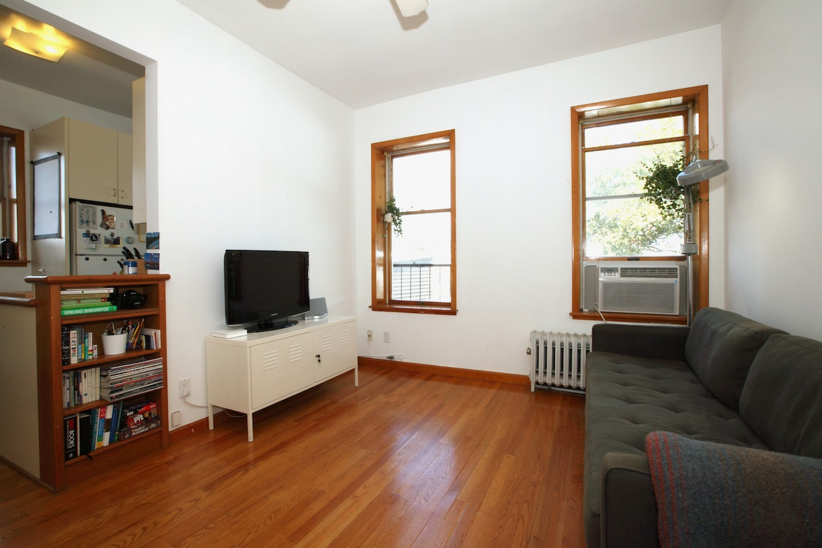 Large living room with comfy sofa, Manhattan skyline view, HDTV connected to apple TV, roku, blu-ray, Wii, XBOX, and Nintendo 64.