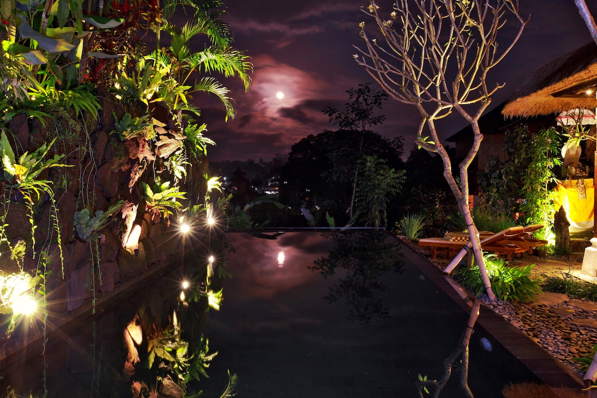 Full moon is a special and spiritual time in Ubud. Doubly so when reflected in the pool.