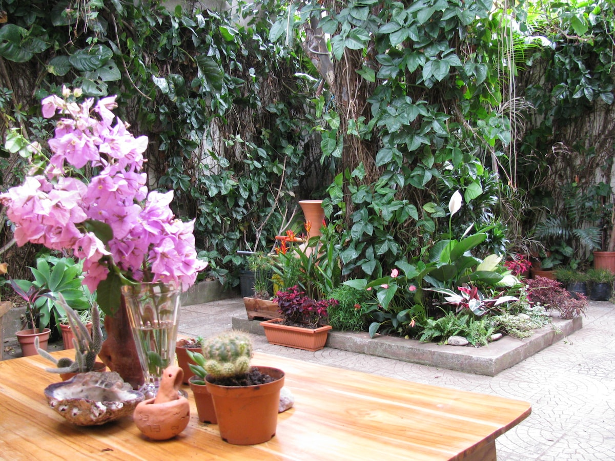 Our indoor tropical patio, a great place to relax and read a book on our hammock