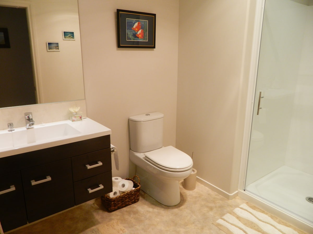 Your bathroom with a metre wide shower.