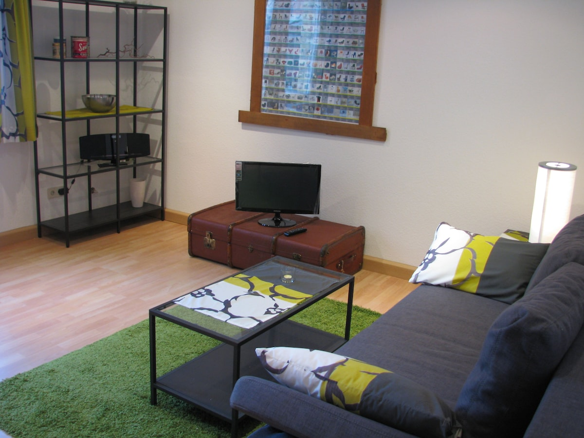 Newly renovated 2-room apartment