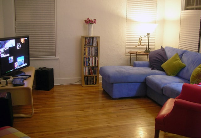 """Video Den - 42"""" HDTV-Tivo, Apple TV, local channels. Pull-out sofa bed for overflow guests."""