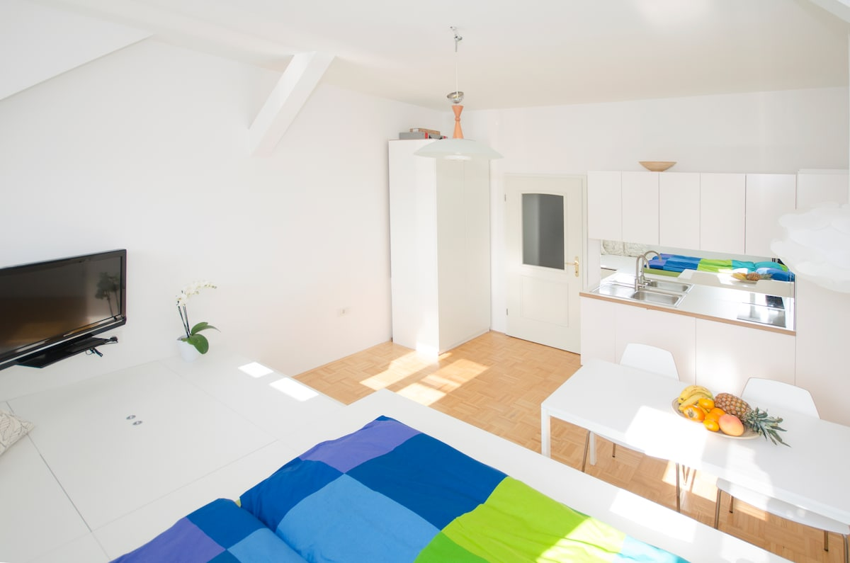 Lovely apartment in the center +P