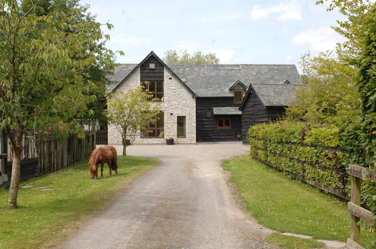 The Barn with Willie grazing