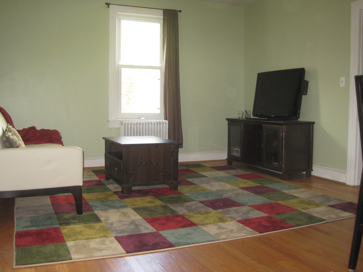 """Quenn-Size Sleeper Sofa & 46"""" TV with built-in Blu-Ray player!"""