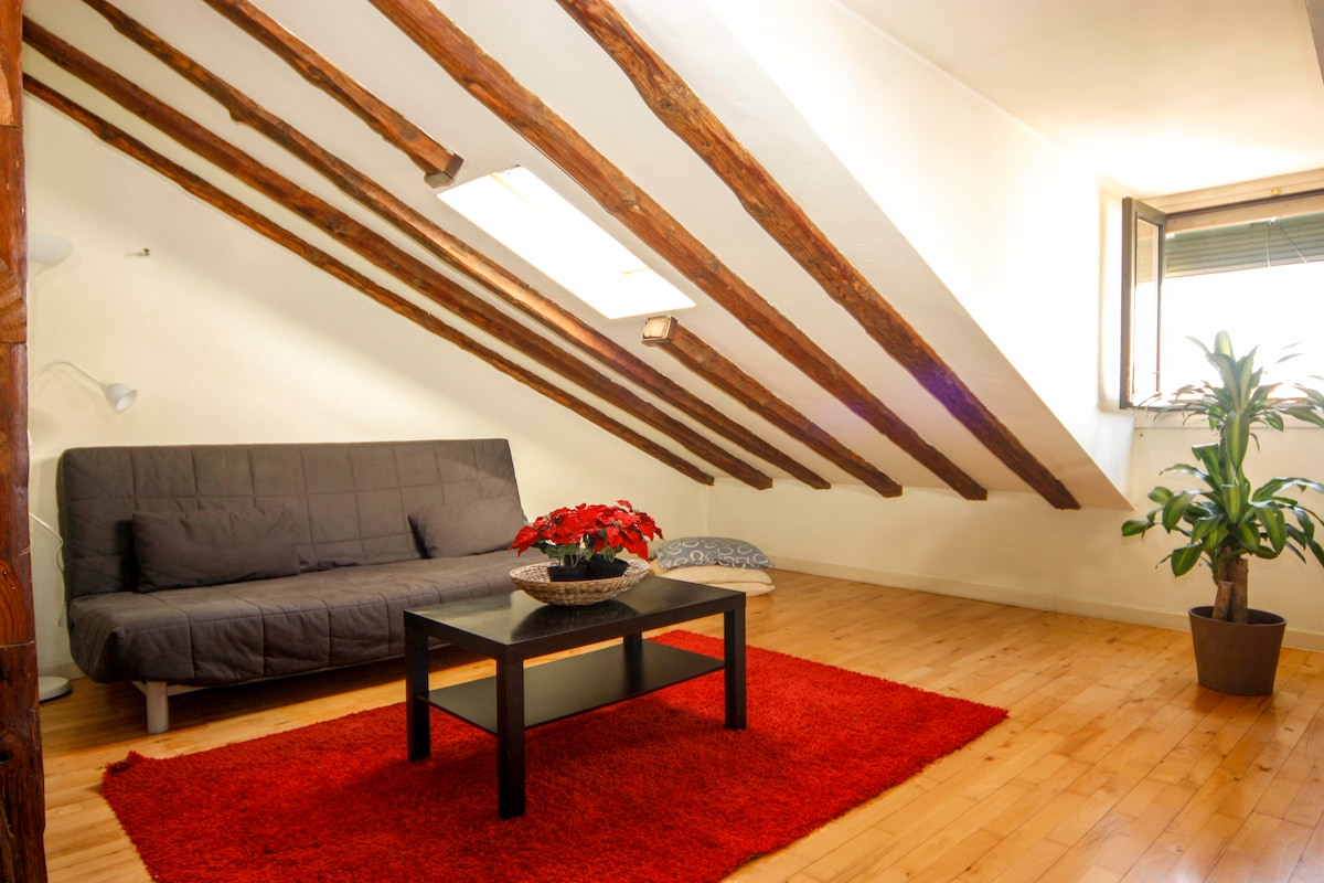 Charming Loft in Historical Center