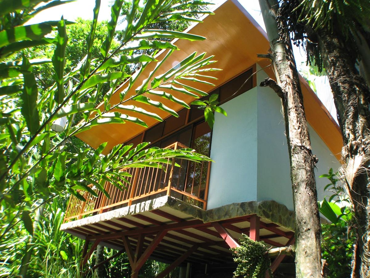 Private Jungle Villa with pool