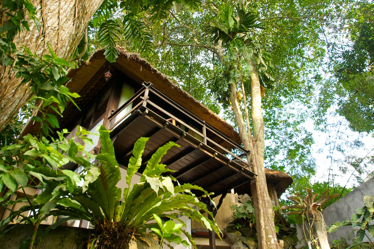 The magical feel of a treehouse, with the comforts of a traditional building. Best of both worlds!