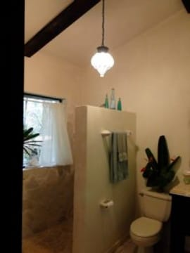 fuller view of guest bath with shower