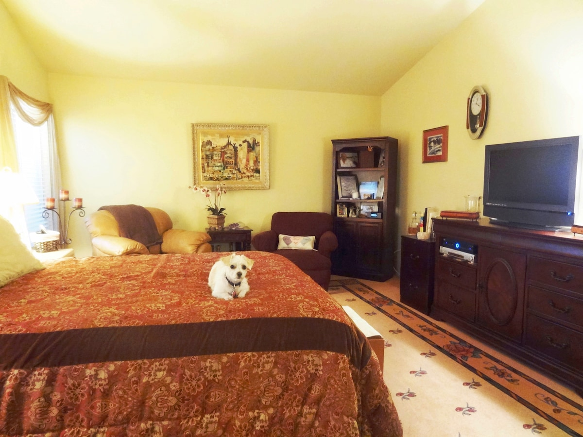 Merlot Suite- Large room with comfy sitting area. Miss C says-Welcome to our home!  I want you to know I am non-shedding and non-allergenic!