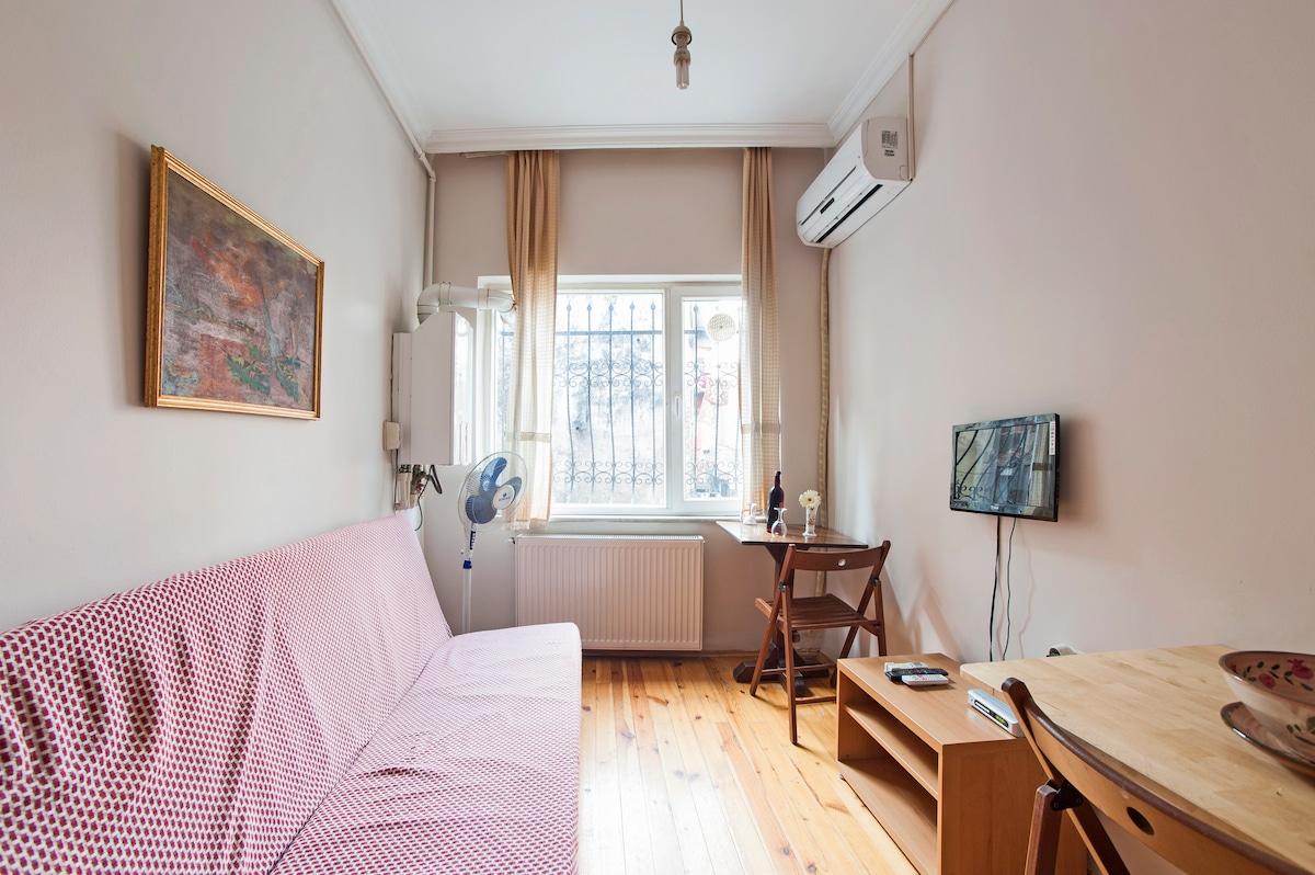 Budget Apartment 2 near Taksim