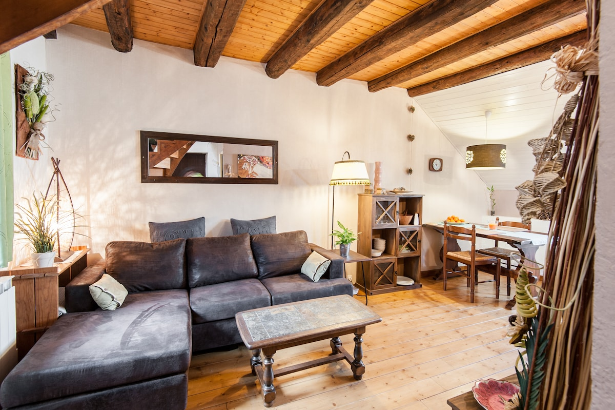 Cosy Duplex in Annecy Old town