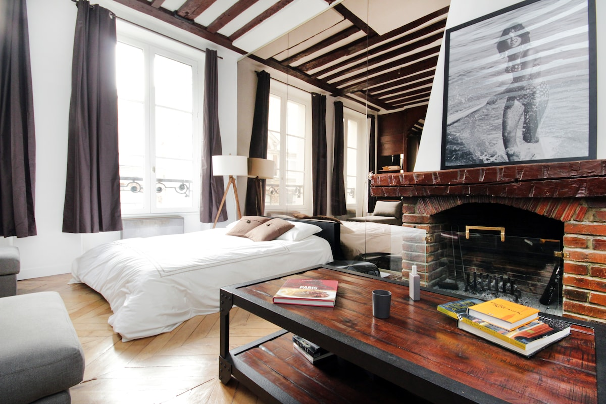 Beautiful Loft in le Marais(540ft2)