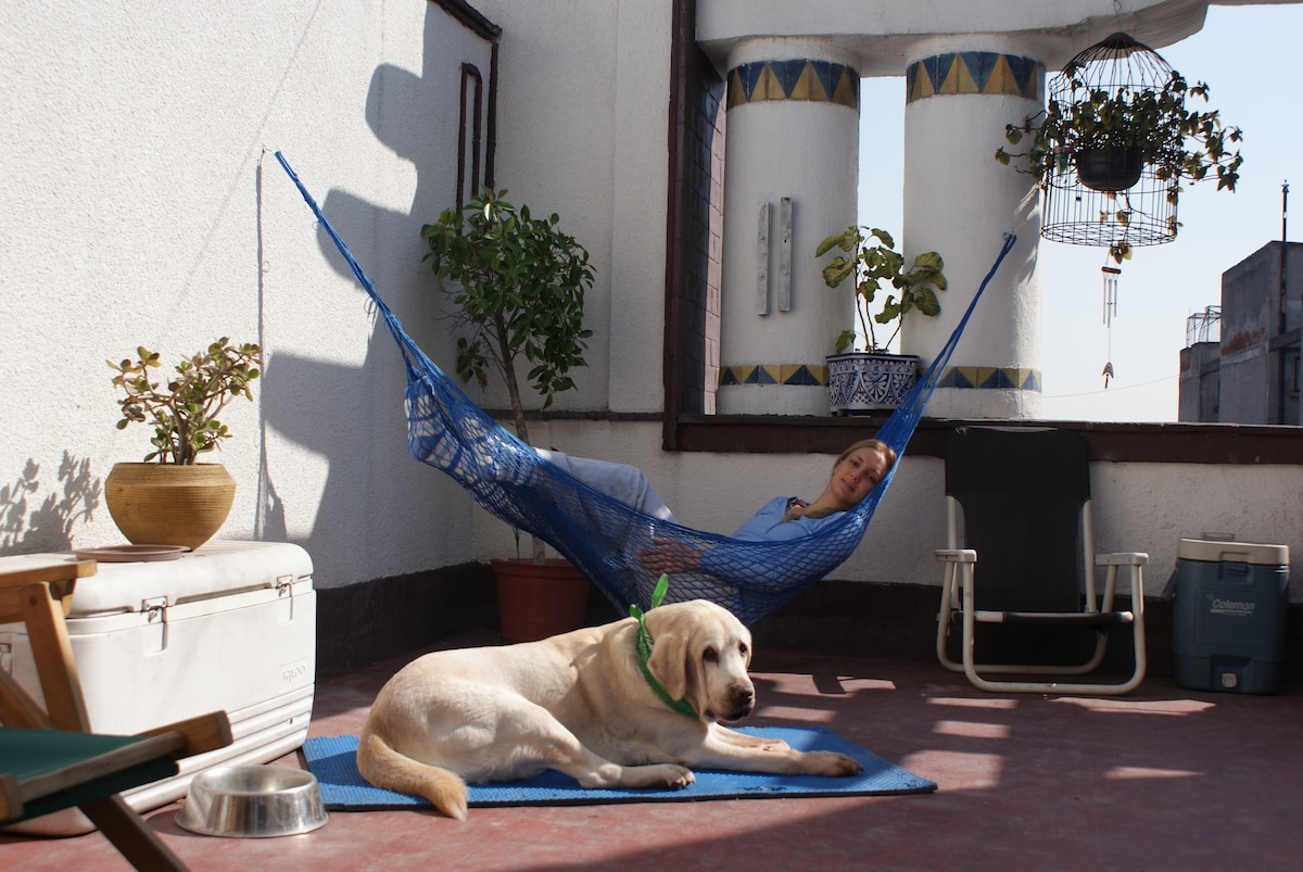 Terraza!! No dog lives in the apartment.