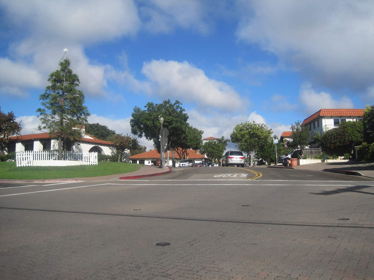 This is the street view up Del Mar where all the shops and restaurants are