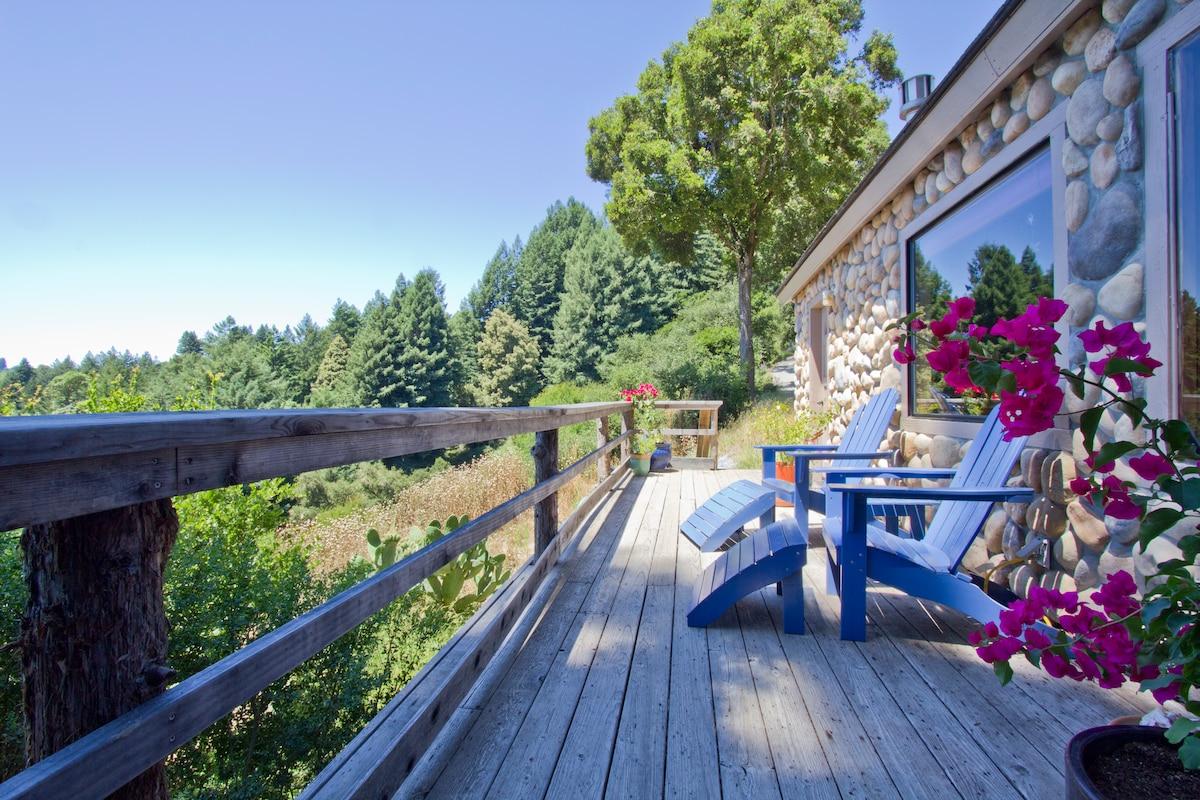 Santa Cruz Mtns. Dragonfly Cottage