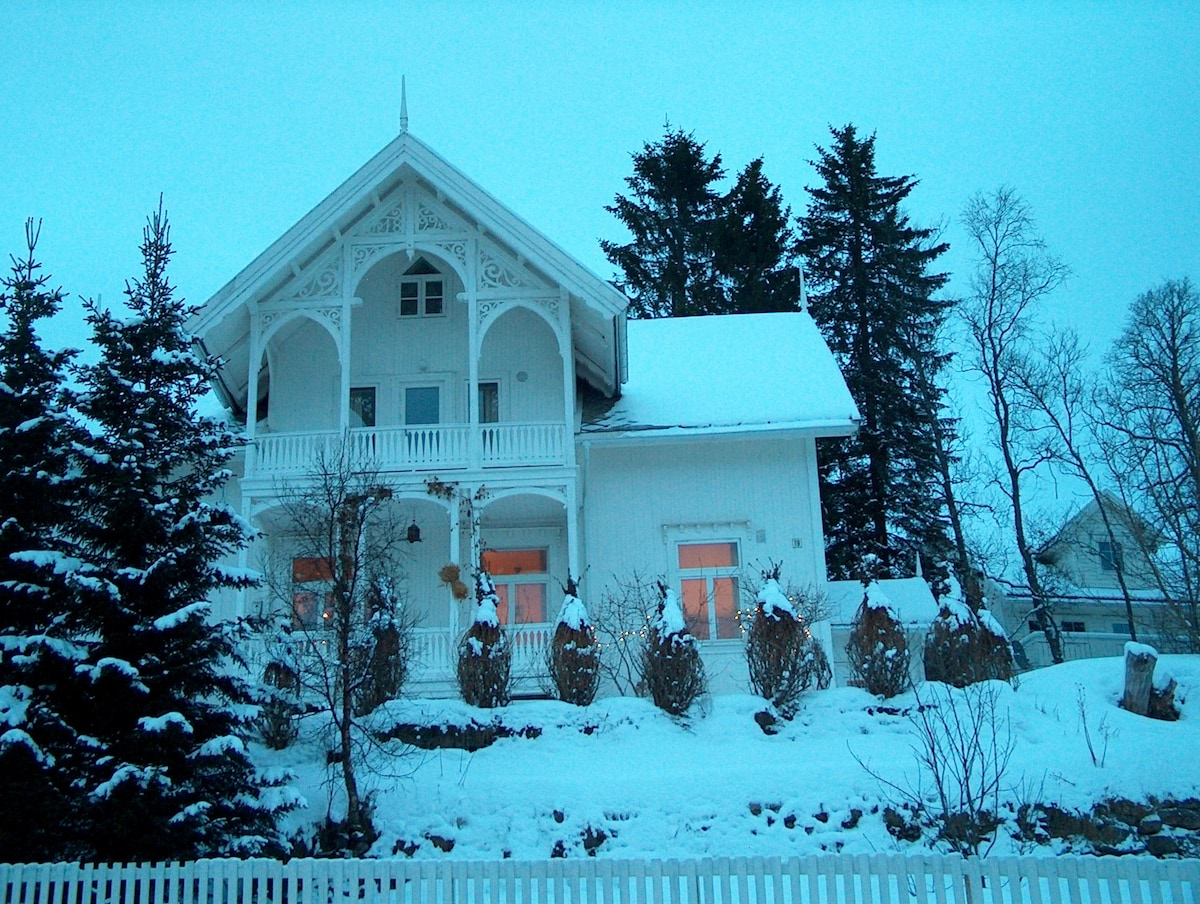 The house in winter