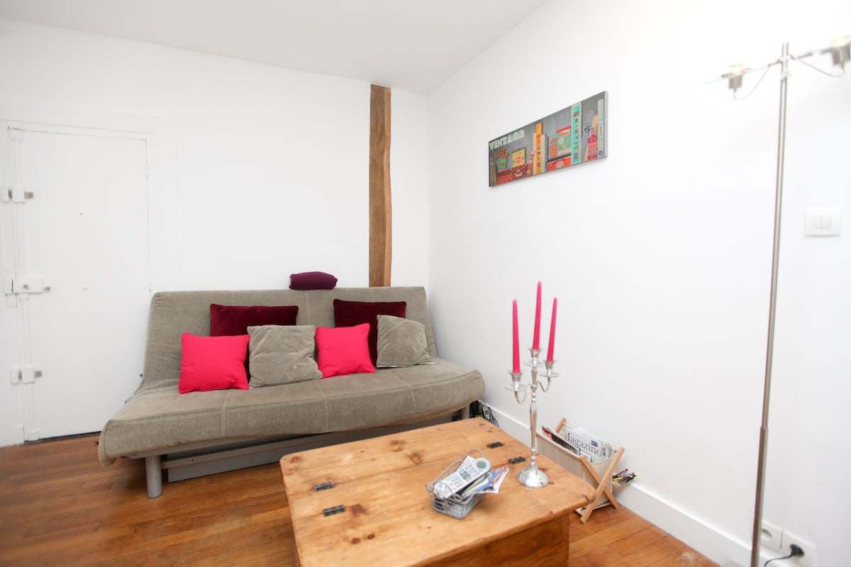 The living room with the sofa bed for 2 persons