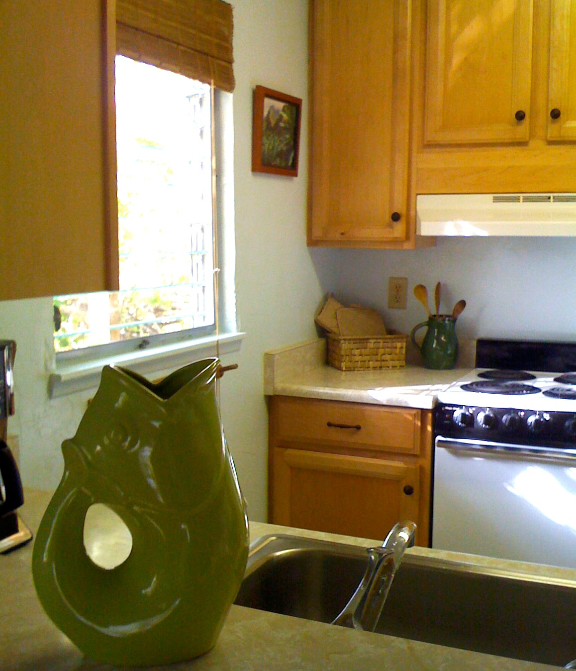 View from dining area looking into the kitchen.  The (website hidden)=ag_viewcase_cont_home?ie=UTF8&caseID(phone number hidden) Pot sits on top of the bar.