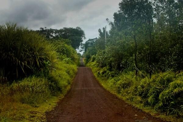 Orchidland retreat in East Hawaii