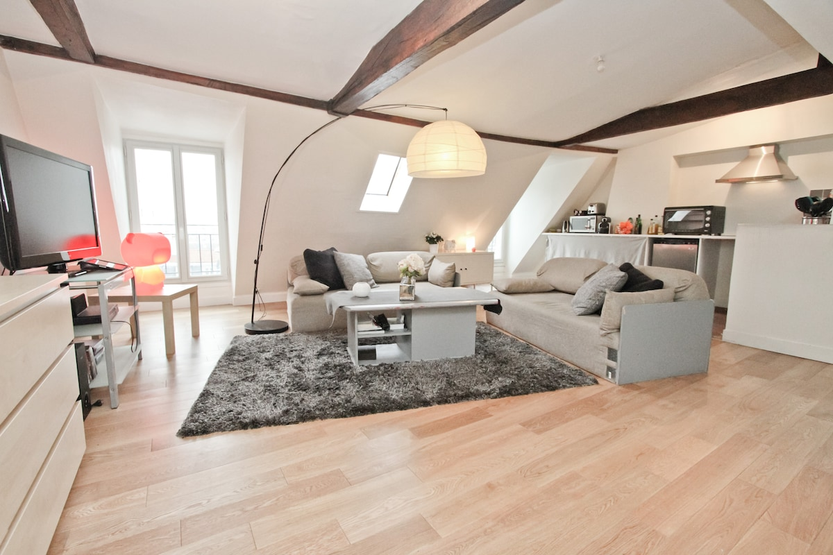 Charming Marais Bastille apartment