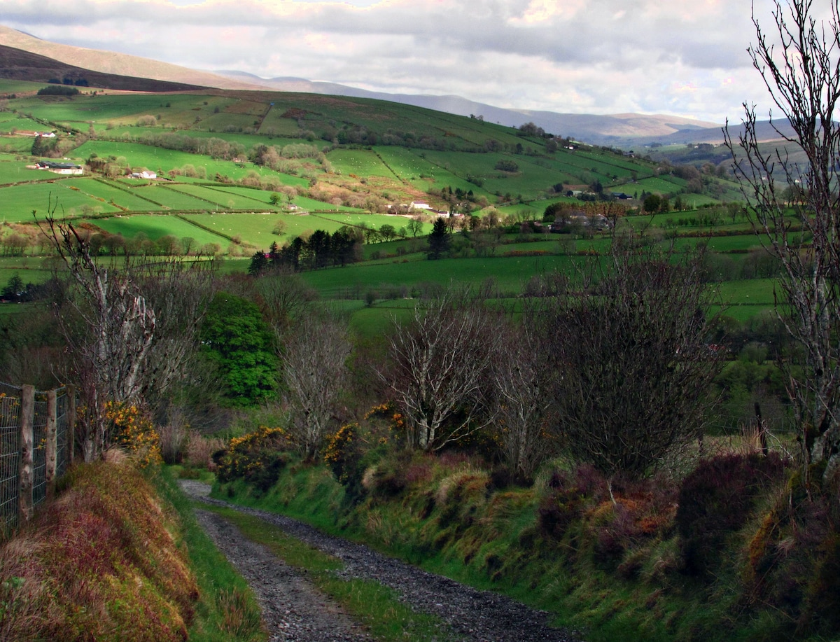 Light and shadows on the Sperrins