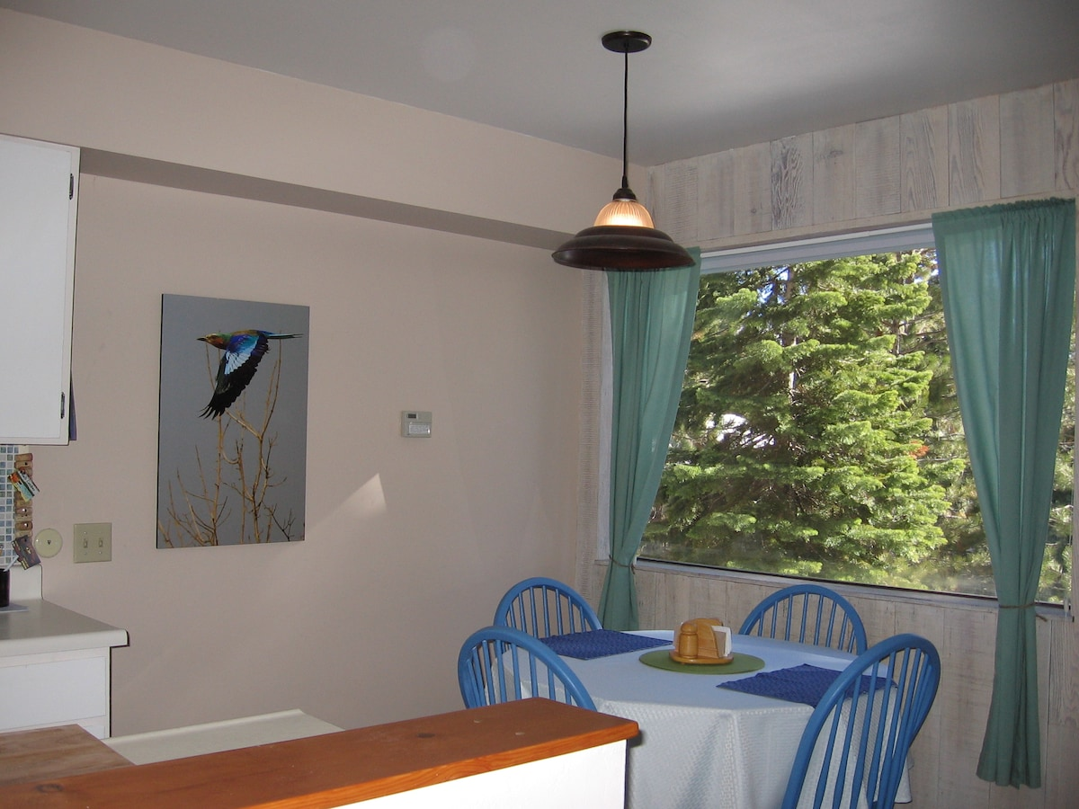 View Out Window from Dining Area