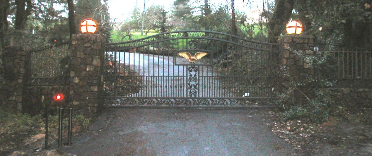 Front gate to property.