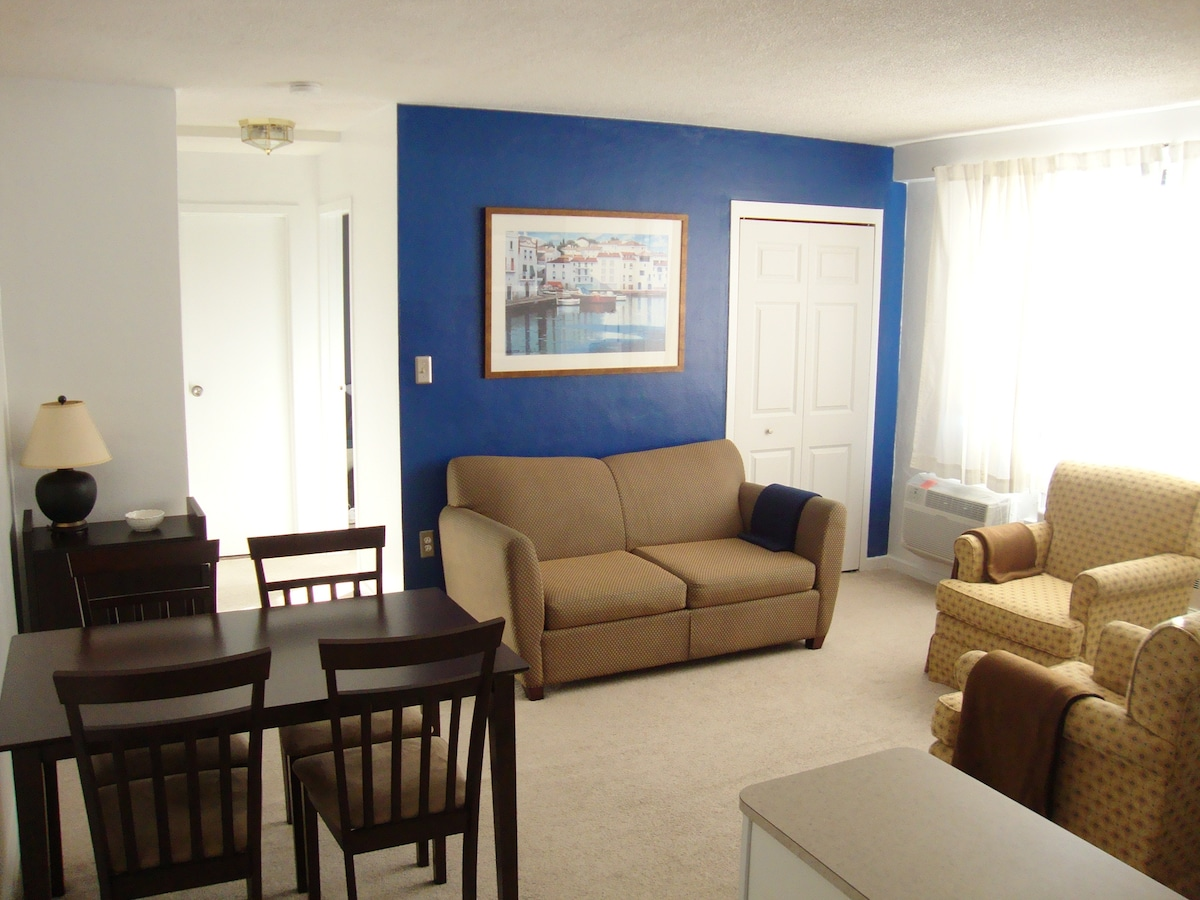 Cute 1BR Apt. Cleveland - Lakewood