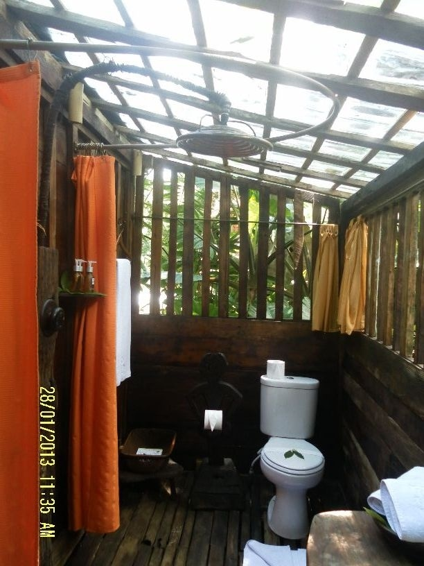 Bathroom, with curtains for privacy. High pressure rain shower top