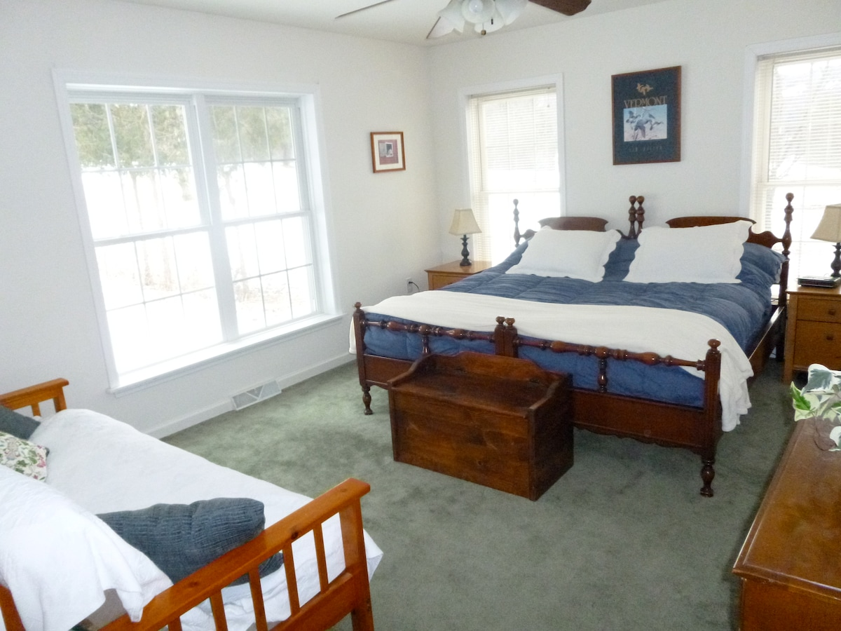 the bedroom with king bed (two twins) and a futon couch