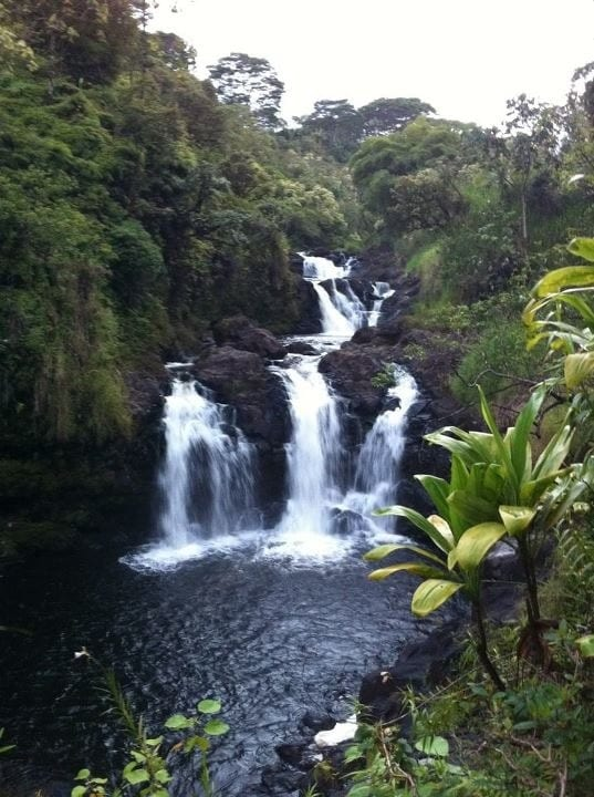If our caretakers are around, they can take you on a hike down to our own waterfall!!