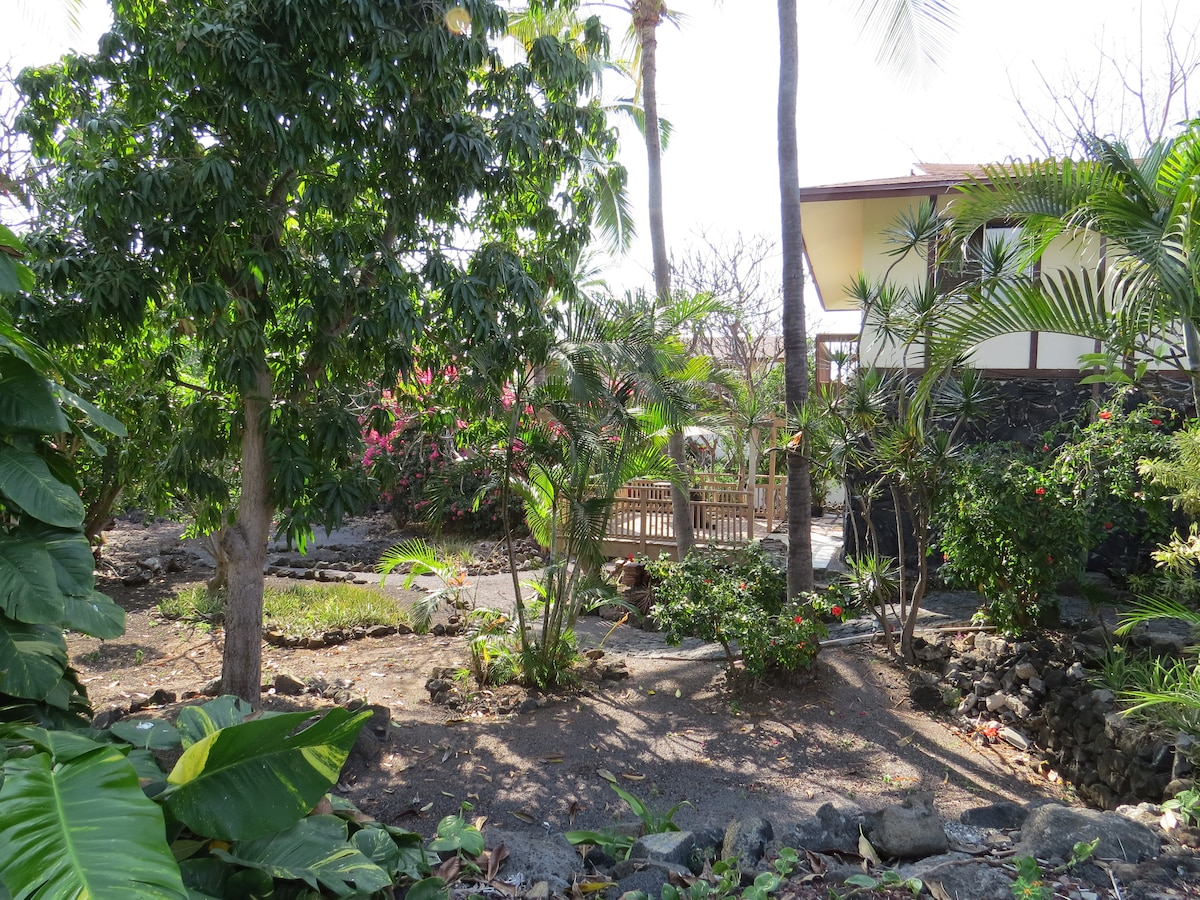 Peaceful garden and deck off of the bedroom- Ripe mangos in season.
