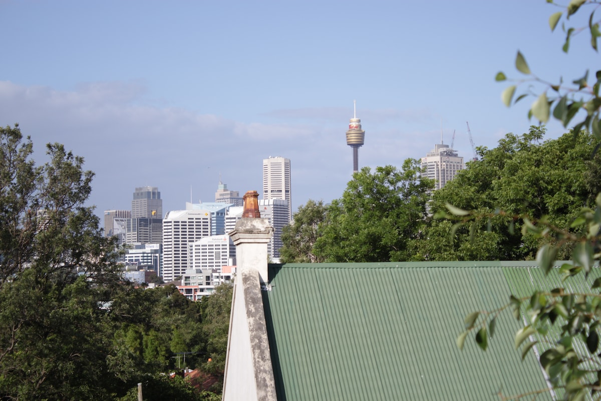 Views of the Sydney city skyline.  So close you can almost touch it.