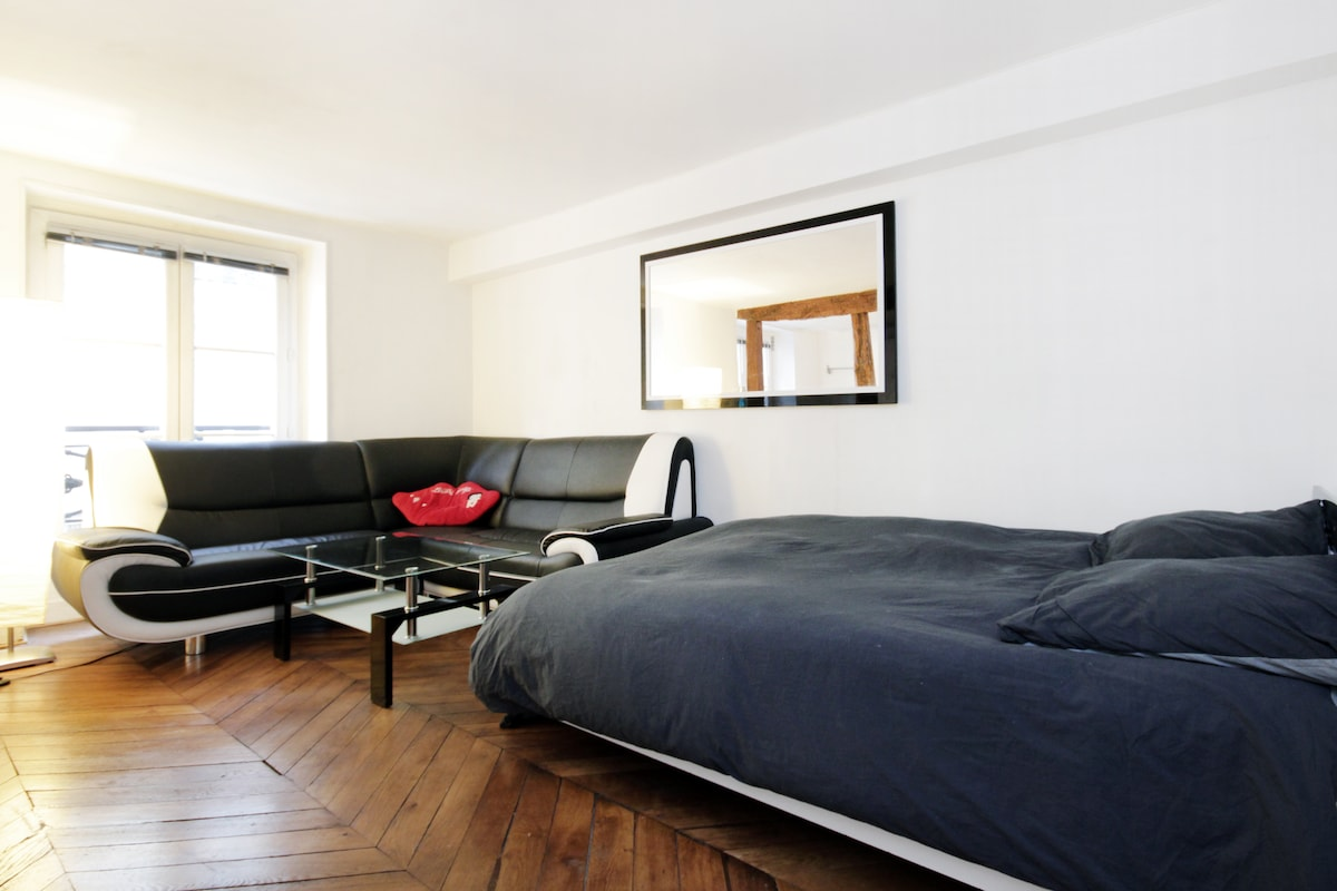 Apartment centre of Paris / Opera