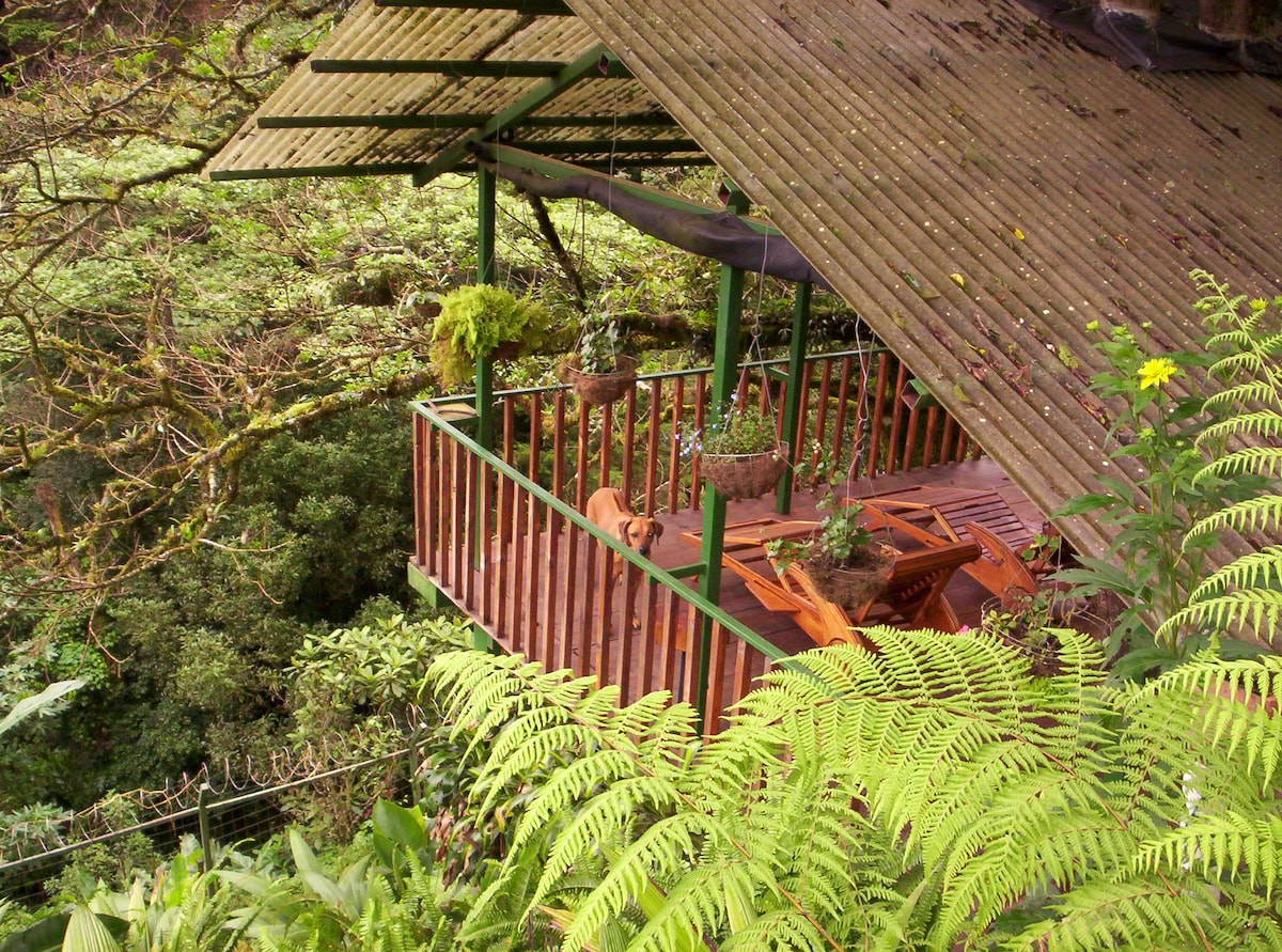 Covered deck near KOI pond and soothing sounds of waterfalls, great for massages, Yoga and relaxation