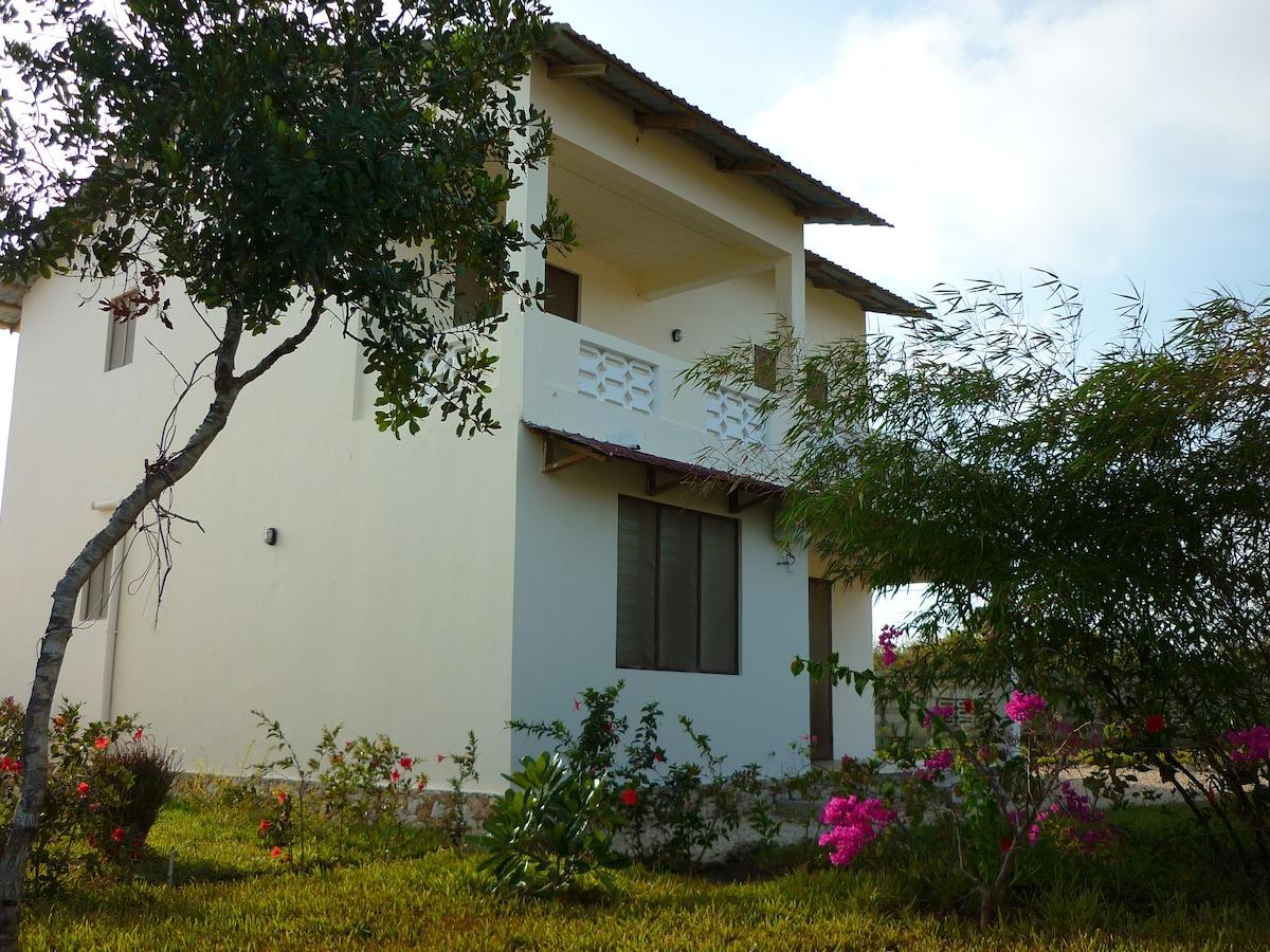 Casa Habari from the back yard