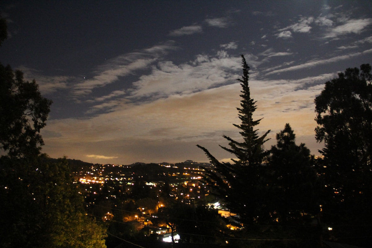 View of Mill Valley lights twinkling