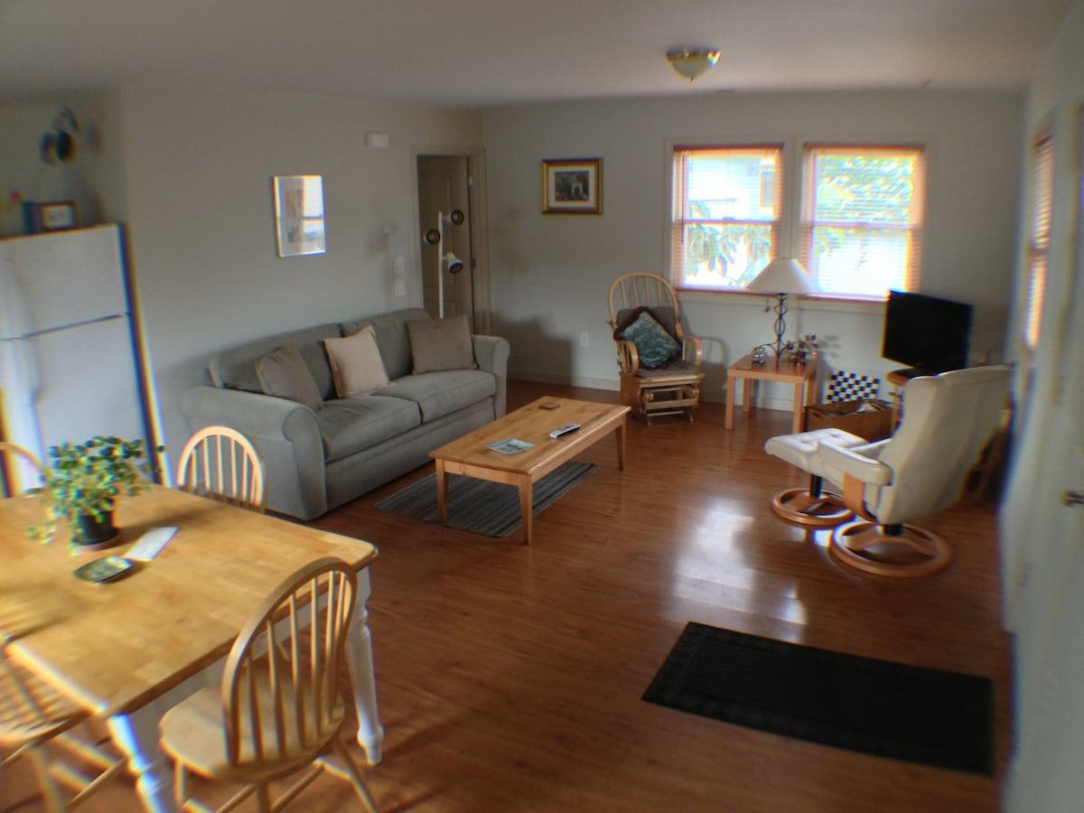 Living room/ kitchen area.