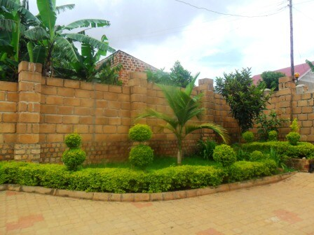 Boundary wall and decorative shrubs.