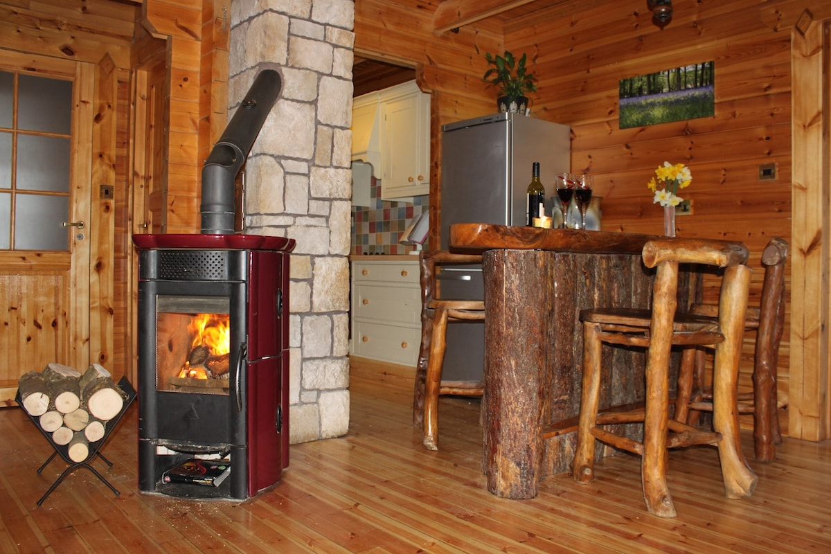 Log Burning Stove and Counter Top