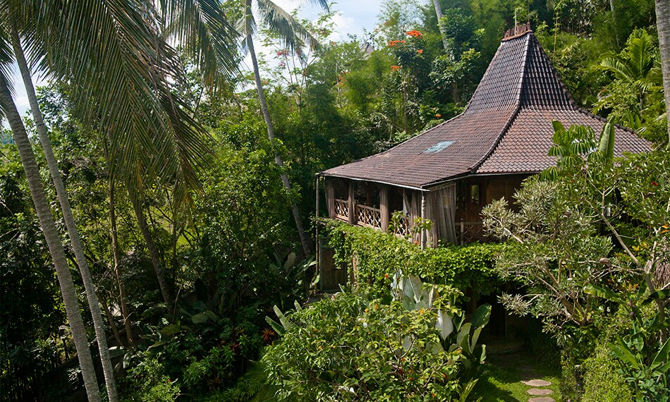 Java Guest House of Pelangi estate