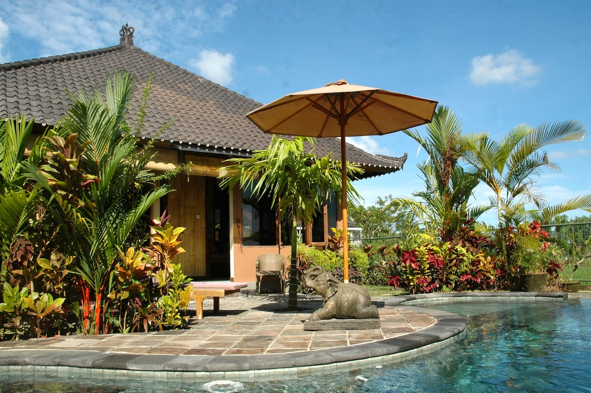 Bamboo Cottage - (pool, wifi, view)