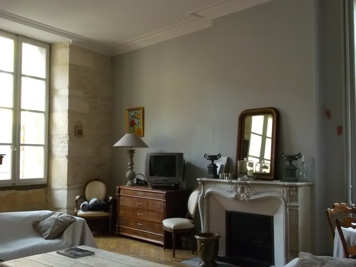 Avignon flat intra muros center cit