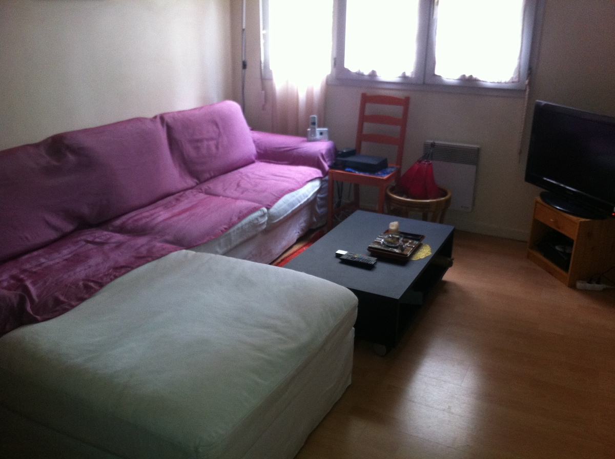 Elegant sofa bed, TV, wifi.