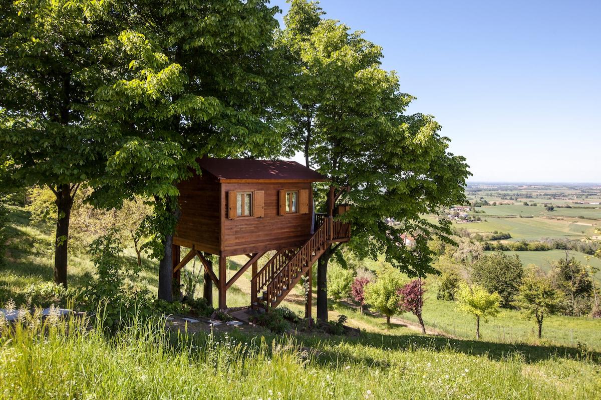 Aroma(n)tica TreehouseinMonferrato
