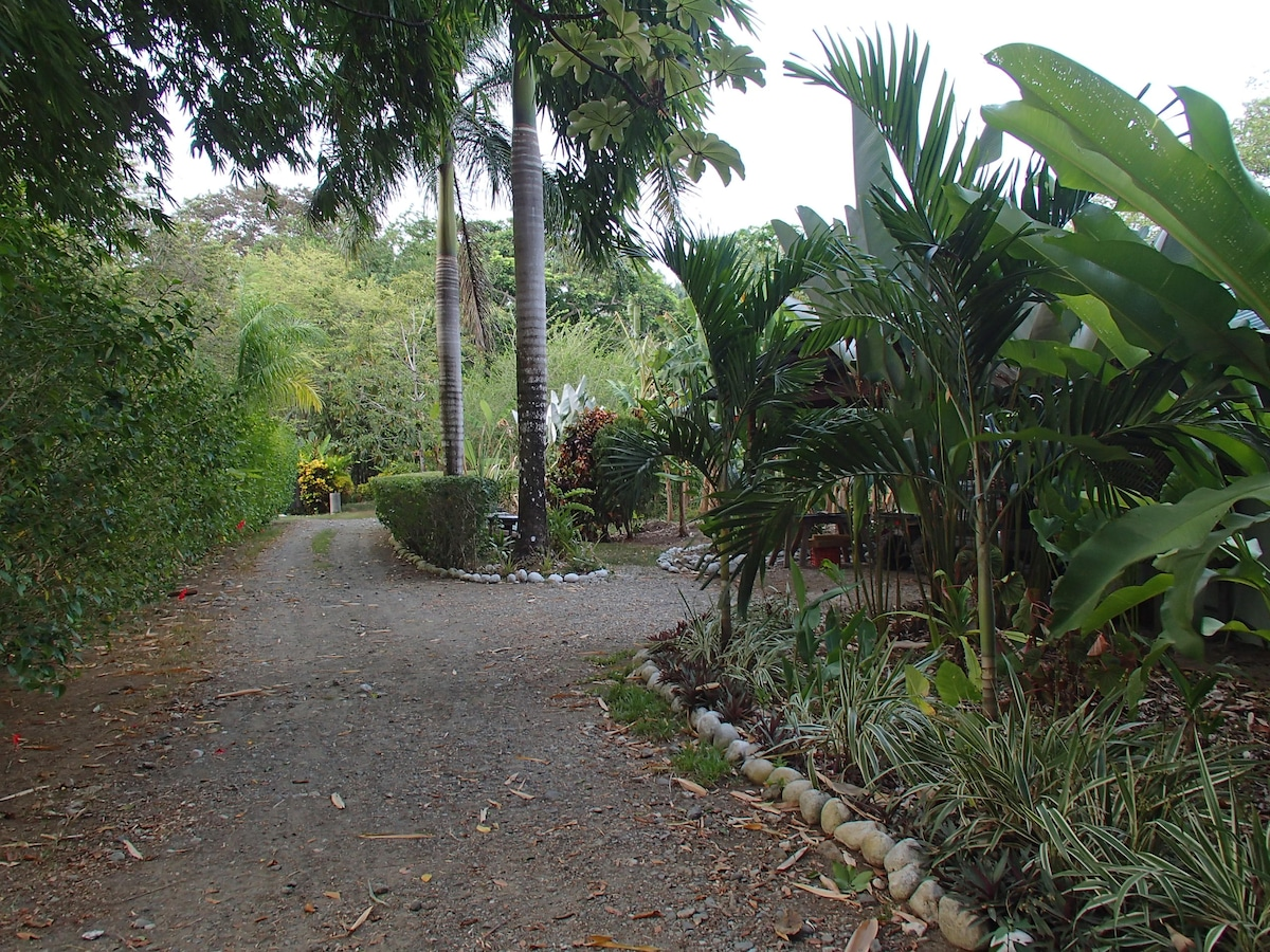 Enter the world of wonder at Casa Dos Rios.