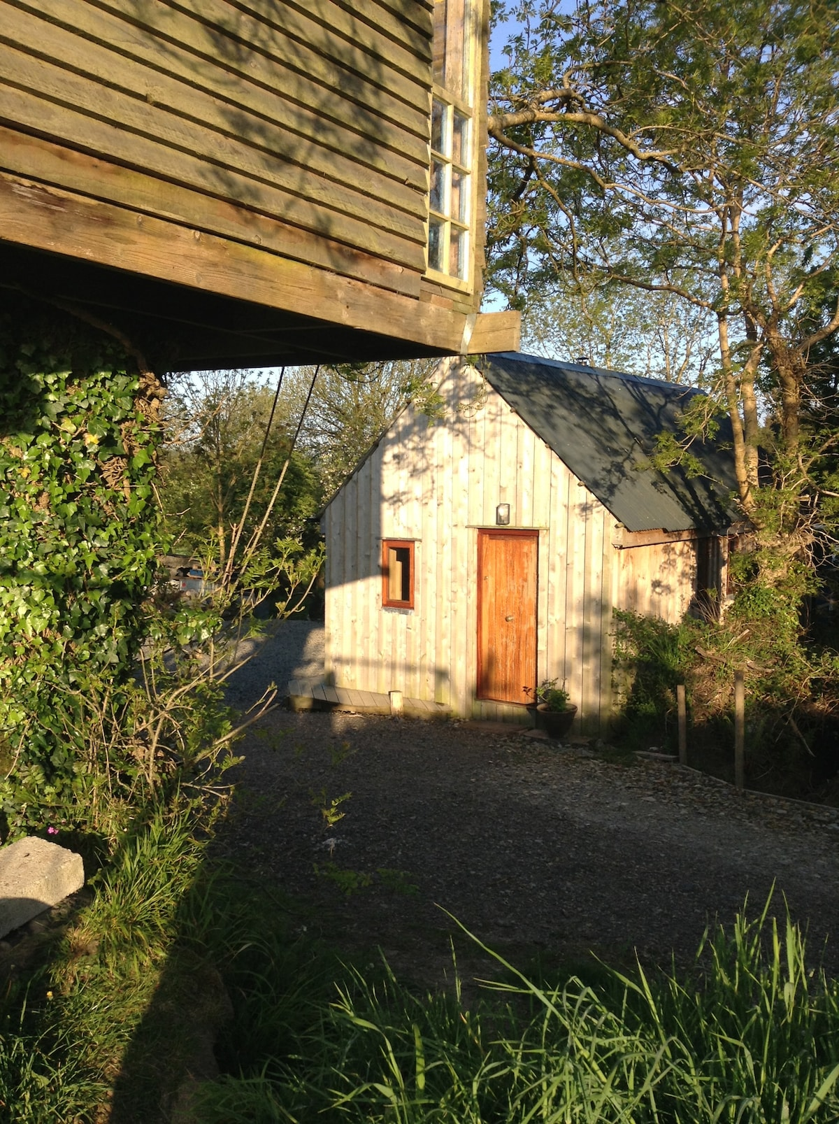 Badgers Hill Chalet, morning sun shines off the cedar-wood finish. treehouse in foreground.