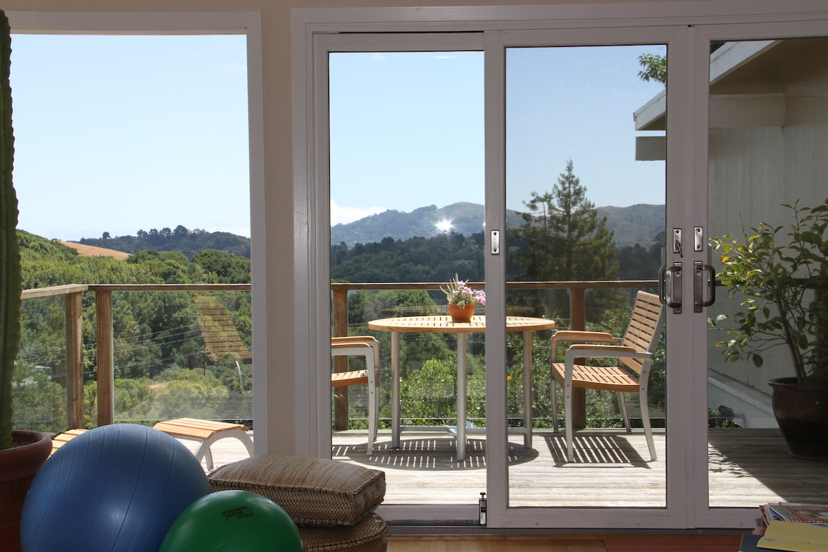 Sunny, Peaceful, Modern Mill Valley
