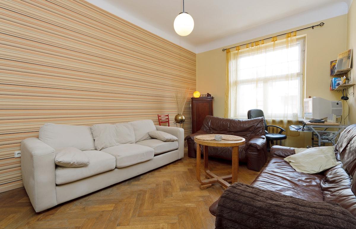 Cozy Flat in urban centre of Riga